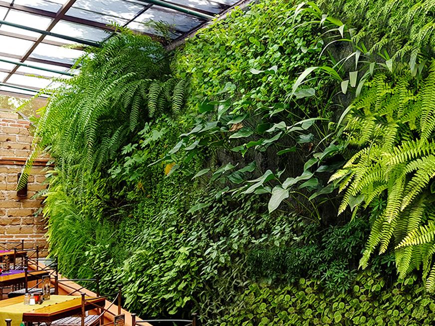 مزایای گرین وال   مزایای دیوار سبز