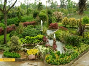 Landscaping-Tehran-Damavand-7