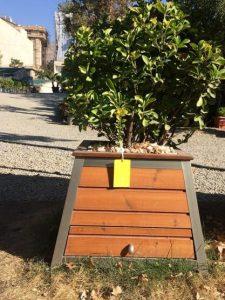Parnia-wooden-flower-box-1-417x555