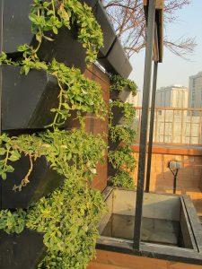 roofgarden-tehran-sheykh bahaei (12)