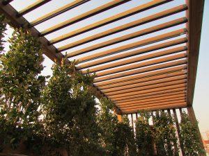 roofgarden-tehran-sheykh bahaei (7)