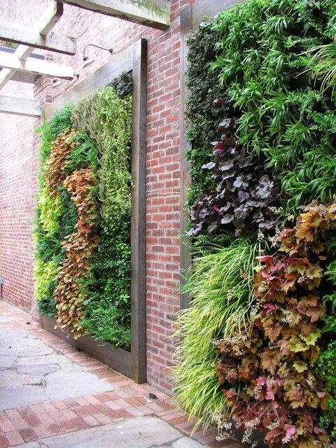 انواع دیوار سبز کدام است